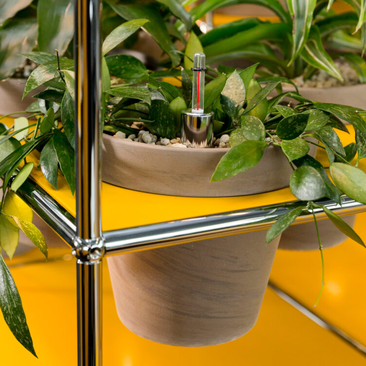 USM Haller Sideboard bepflanzt 1